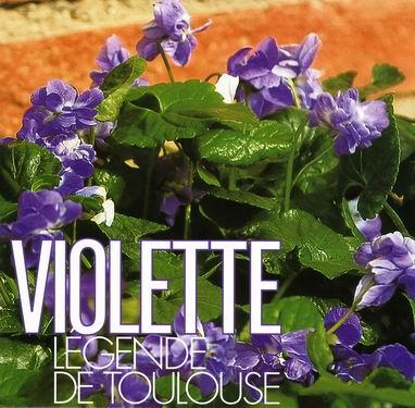 rêve 2..la violette Violette%202003%2001S